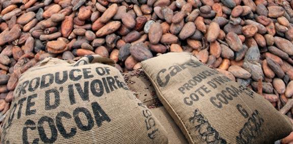קקאו קפה שותה שותים סחורות / צלם: רויטרס